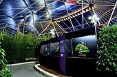 Bonsai show at Folies Flore 2014 - Mulhouse - France