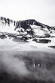 Gentoo penguins on mist - Antarctica