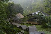 Nouragues scientific station in forest - French Guiana  ; Parare Camp