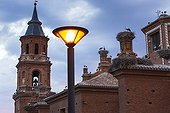 White storks on the Collegiate Church of San Miguel - Spain ; Alfaro's colony of White Storks