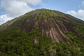 Inselberg in primary forest - Nouragues French Guiana  ; granite outcrop