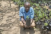 Man with young tree at Elsamere tree nursery - Kenya