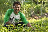 Man taking care of plants - Gunung Rinjani Lombok Indonesia ; New Trees Program