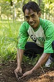 Man planting a tree - Gunung Rinjani Lombok Indonesia ; New Trees Program