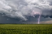 Severe thunderstorm over the campaign in the spring - France ; Supercell is discharged. Lightning is very present. Snorkel is reformed at the back of the storm.
