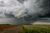 Severe thunderstorm over the campaign in the spring - France ; Mesocyclone<br>A supercell develops. Snorkel forms for several minutes. The highly developed tuba will not touch the ground. Strong wind and hail from this storm.