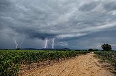 Storm over a vineyard in autumn - France ; 5 photos overlay 1/25 seconds taken with a flash detector.