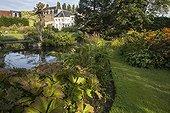 Rodgersia next to a flowered garden pound