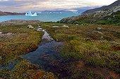 Iceberg the bottom of Scoresbysund - Greenland