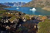 Icebergs in the Nordvest Fjord - Greenland
