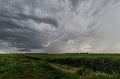 Supercell storm over the countryside - France ; Many inter-cloudy flashes crawl under the anvil. A wall cloud develops in the mesocyclone.