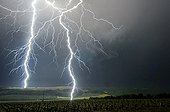 Close lightning strikes in the countryside - France  ; Lightning strike to 0,950 km and 1,200 km from the photographer.
