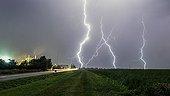 Storm above a food factory - France  ; alfalfa dehydration plant
