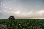 Orages violents au dessus de la campagne en été - France ; L'arrière de l'orage s'accompagne de grands éclairs rampant sous l'enclume. Ce sont des spiders ou crawlers.