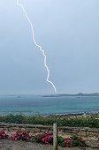 Orage au dessus de la Manche en été - Pointe Bretonne France ; De nombreux impacts de foudre frappent la mer et les côtes. Certains sont à quelques centaines de mètres du photographe.
