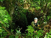 Maros Karst exploration forest - Sulawesi Indonesia  ; In October 2014, the cave paintings found in caves in the limestone massif have been recognized as one of the oldest in the world (- 39 000 years) by a team of US researchers.