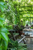 City garden terrace