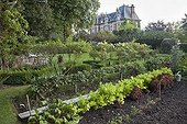 Kitchen garden in front of a manor house