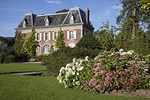 Hydrangeas in bloom in front of a manor house