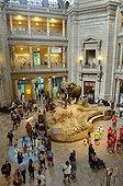 Entrée du Musée d'Histoires Naturelles de Washington DC