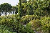 Gravel path in a mediterranean garden