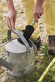 """Préparation d'un amendement organique type """"Or brun"""" ; Mettre de l'engrais dans un arrosoir"""