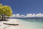 Tropical beach - Kangge island Alor Indonesia