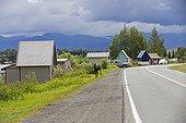 Moose in town near Lake Hood - Alaska USA  ; Lake Hood Seaplane Base