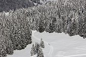 Cross Country Skiing - Aravis Alps France