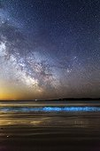Milky Way and bioluminescent plankton - Ile d'Houat France. The rollers breaking on the beach of st Treac'h Goured are illuminated by the presence of phosphorescent plankton. In the sky, the Milky Way between Scorpio and Sagittarius is beautiful.