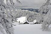 Reserve Grand Ventron in winter - Vosges France ; altitude 1204 m<br>from the inn, overlooking Cornimont, La Bresse, the Col du Brabant