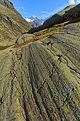Glacial striations on gneiss - Alpes France  ; Hercynian Massif - crystalline rocks - background : the Mont Blanc massif