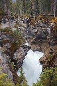 Athabasca Falls - Jasper Alberta Canada