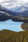 Peyto Lake - Banff Alberta Canada