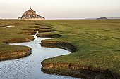 Meandering creek in the bay of Mont Saint-Michel - France ; Criche along a dike