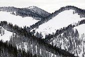 Winter landscape of Grand Teton NP - Wyoming USA