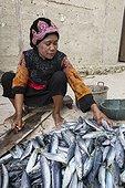 Women preparing fishes - Grogos Island Maluku Indonesia  ; Koon Marine reserve WWF-Indonesia projectTerritorial User Rights for Fishing (TURF)