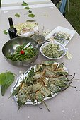 Meal of edible wild plants - Auvergne France