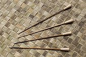 Traditional Dayak blowgun arrow with poison dart - Indonesia ; WWF-Indonesia