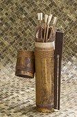 Traditional Dayak blowgun arrow with poison dart - Indonesia ; WWF-Indonesia