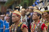 Men wearing feather hornbill during Parade Dayak - Indonesia ; Anniversary of Mahakam Hulu District<br>WWF-Indonesia