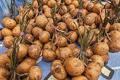 Local fruits in market - Borneo Indonesia ; Mahakam river bank<br>WWF-Indonesia