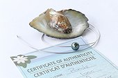 Jewelry with black pearl of Tahiti and certificate of authenticity ; Fake pearls can be polished when quality of their surface is not satisfactory then tinted, irradiated or undergo a treatment to modify colors and luster.Even on Tahiti, trade in counterfeits has appeared and some local dealers are abusing the naivety of tourists by selling counterfeit,