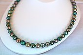"""Tahitian black pearls mounted on a flush-du-neck collar ; sold in retail. The beads called """"Tahitian black pearls"""" is an AOC, whose pearly tones vary from green to darker or lighter colors, through the shades pulling purple."""
