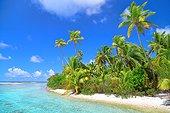 Desert islet in the lagoon - Tuamotu French Polynesia