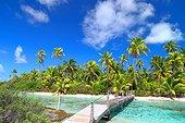 Ponton an islet in the lagoon - Tuamotu French Polynesia