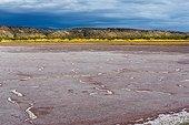 Sodium carbonate deposit - Lake Magadi Rift Valley Kenya