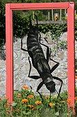 Earwig decoration panel - Wesserling Park Alsace France