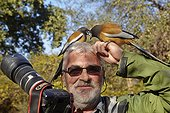 Rufous treepies about the photographer - Ranthambore India