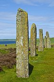 Megaliths of Ring of Brodgar - Orkney Mainland Scotland ; Heart of Neolithic Orkney